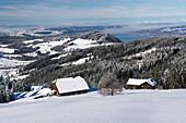 Zwei Holzhäuser in einer verschneiten Hügellandschaft, dahinter der Zürichsee, Kanton Schwyz, Schweiz
