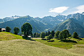 Two persons haymaking in the village of Braunwald, Glarus Alps, canton of Glarus, Switzerland