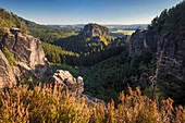View over the Rauschengrund to Rauschenstein in the evening sun in the summer, the Elbe Sandstone Mountains, Saxon Switzerland National Park, Saxony, Germany