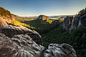 View over the Rauschengrund to the Rauschenstein in the evening sun in the summer, the Elbe Sandstone Mountains, Saxon Switzerland National Park, Saxony, Germany