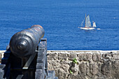 Cannon, Fort Shirley, Portsmouth, Cabrits National Park, Dominica, Lesser Antilles, Caribbean