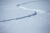 Tracks of winter sports athletes in the snow, Pitztal, Tyrol, Austria