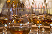 Whisky tasting glasses at The Glenmorangie Whisky Distillery, Tain, Ross-shire, Highland, Scotland, United Kingdom