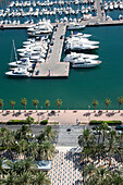 Palm trees alongside harborfront promenade and yachts and sailboats in Port of Alicante marina , Alicante, Andalusia, Spain