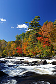 Indian summer, autumn colors at the Riviere du Nord, Laurentians, Province Quebec, Canada