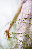 Woman in field of tall grass, low angle view, cropped
