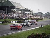 Shelby Cup, two Ford Mustangs behind a Ford Falcon Sprint, Goodwood Revival 2014, Racing Sport, Classic Car, Goodwood, Chichester, Sussex, England, Great Britain