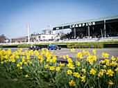 Finishing straight, Bugatti racing cars, Grover-Williams Trophy, 72nd Members Meeting, racing, car racing, classic car, Chichester, Sussex, United Kingdom, Great Britain