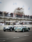 Jaguar C-Type (L) and Aston Martin DB3, Peter Collins Trophy, 72nd Members Meeting, racing, car racing, classic car, Chichester, Sussex, United Kingdom, Great Britain