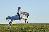 girl riding a jumping, bucking horse, Freising, Bavaria, Germany