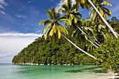 Tropical Island at Strait of Iris, Triton Bay, West Papua, Indonesia