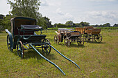Carriages to be sold near Ahaus , Muensterland , North Rhine-Westphalia , Germany , Europe