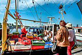 Woman selling fish from a boat, Travemuende, Hanseatic City, Luebeck, Baltic Coast, Schleswig-Holstein, Germany