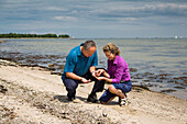 Couple collecting amber on the beach, Baltic Coast, Schleswig-Holstein, Germany