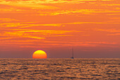 A sailing yacht in sunset at the northern shore of Mallorca, Balearic Islands, Spain, Europe