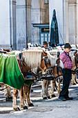 fiaker carriages in Salzburg, Salzburg, Austria, Europe