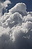 Gleitschirmflieger in der Luft vor einer gewaltigen Wolke, Tannheimer Tal, Tirol, Österreich