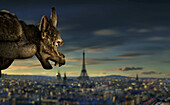 Gargoyle watching over the skyline of Paris in the evening, Notre Dame de Paris, Eiffel Tower in the background, Ile de France, Ile de la Cite, Paris, France, Europe