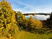 autumn at lake, Upper Bavaria, Germany