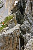 Red bivouac standing at abyss, Bivacco Rigatti, Latemarspitze, Latemar, UNESCO world heritage Dolomites, Dolomites, Trentino, Italy