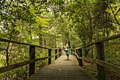 Hispanic woman walking on wooden footbridge in forest, Virginia Beach, VA, USA