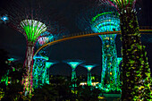 Electric supertrees lit up at night, Singapore, Republic of Singapore, Singapore, Republic of Singapore, Republic of Singapore