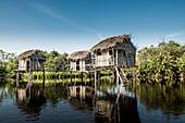 Thatch houses built over rural lake, Riviera Nayarit, Nayarit, Mexico