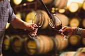 Caucasian couple tasting wine in cellar, Walla Walla, WA, USA
