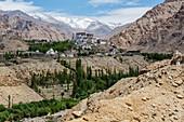 Likir Monastery in remote mountain valley, Likir, Ladakh, India, Likir, Ladakh, India