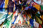 Low angle view of colorful prayer flags, Leh, Ladakh, India