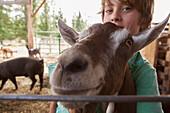 Caucasian boy hugging goat on farm, Hope, Idaho, USA