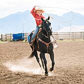 Caucasian boy using lasso on horse at rodeo, Jospeh, Oregon, USA