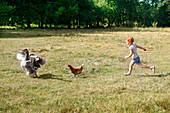 Young ginger girl chasing a chicken chasing a goose in a wheat field in summer