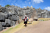 South America, Peru, Cuzco, Sacsayhuaman, wearing some woman in traditional dress carrying a baby walking with a lama