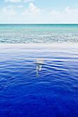 Mixed race man swimming underwater