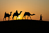 Silhouette of camels and drivers in Thar Desert, Jaisalmer, Rajasthan, India