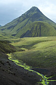Green Mountain with Neon Green Riverbed, Alftavatn, Iceland