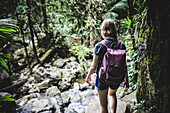 Young Woman with Backpack Walking Through El Yunque Rainforest, Puerto Rico