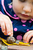 Close-up of toddler girl in rain jacket watching snail cross yellow leaf in Chico, California.