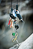 Fly fishing gear hangs from a branch in Squamish, British Columbia.