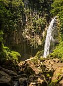 West coast of Dominica