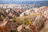Cave dwellings, vineyards and orchards fill this Cappadocian terrain in central Turkey.