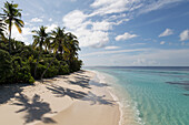 A deserted beach and tropical vegetation on an island in the Northern Huvadhu Atoll, Maldives, Indian Ocean, Asia