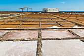 Salt pans still in use at El Carmen Salinas and Salt Museum on the east coast, Caleta de Fuste, Fuerteventura, Canary Islands, Spain, Europe