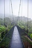 Rope Bridge, Golden Triangle, Northern Thailand, Thailand, Southeast Asia, Asia