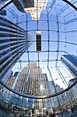 Skyscrapers of Fifth Avenue viewed from below through a glass roofed ceiling, Manhattan, New York City, New York, United States of America, North America