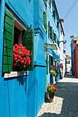 Burano, island near Venice, Veneto, Italy, Europe