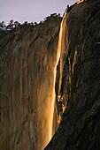 Afternoon light on Horsetail Falls, a phenomenon that occurs once or twice a year in late February due to the angle of the sun and snow melt on the cliffs, Yosemite Valley, Yosemite National Park, UNESCO World Heritage Site, California, United States of A