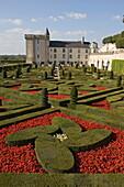 Part of the extensive ornamental flower and vegetable gardens, Chateau de Villandry, UNESCO World Heritage Site, Indre-et-Loire, Loire Valley, France, Europe