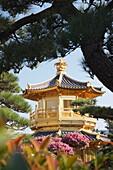 Golden Pagoda in Nan Lian Garden near Chi Lin Nunnery, Diamond Hill, Kowloon, Hong Kong, China, Asia